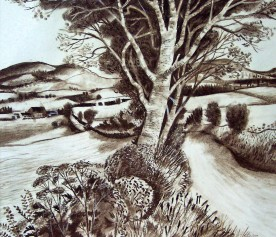 Bathgate Hills
